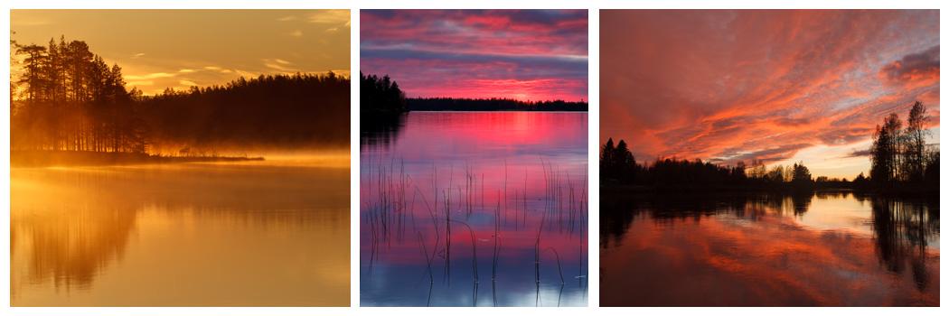 finland_zon
